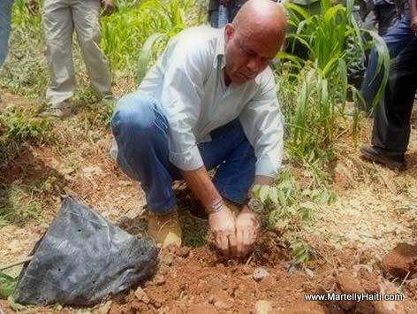 President Michel Martelly ap plante pye bwa nan Grand-Bois Haiti